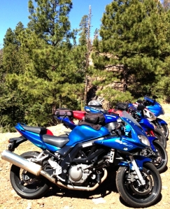 All 5 motorcycles posing with the Arrow tree, roughly 40 miles south of Alpine, AZ.